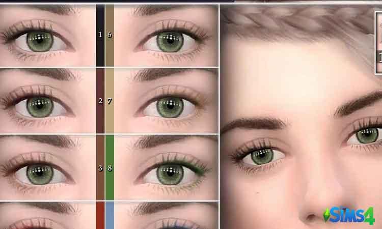 Female Eyelashes 06
