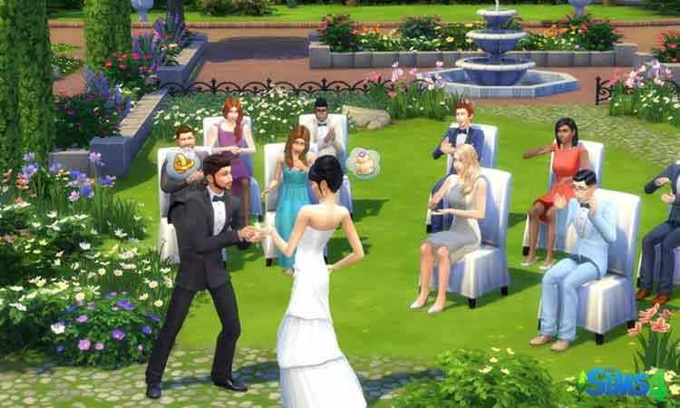 Wedding planner Career