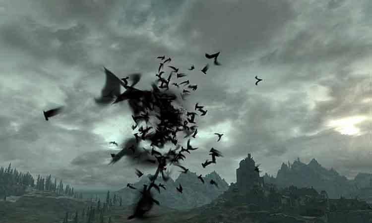 Bat Travel Vampire